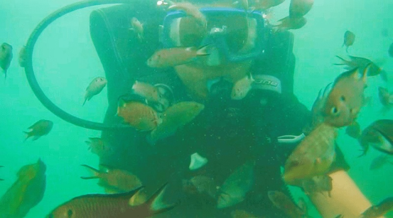 Scuba diving at Malvan - Mythical India